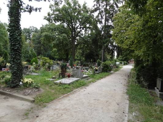 A Surprise in the Wrocław Cemetery